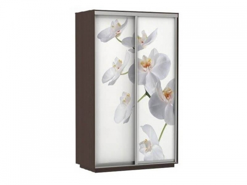 Шкаф-купе Фото Хит Орхидея