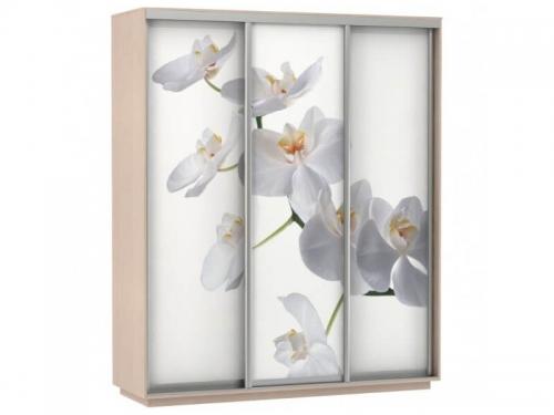 Шкаф-купе Трио Фото Орхидея